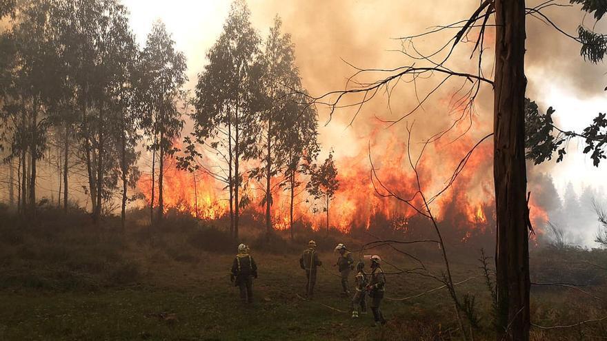 Activo un fuego en Cuntis que supera las 20 hectáreas y otro en Ourense