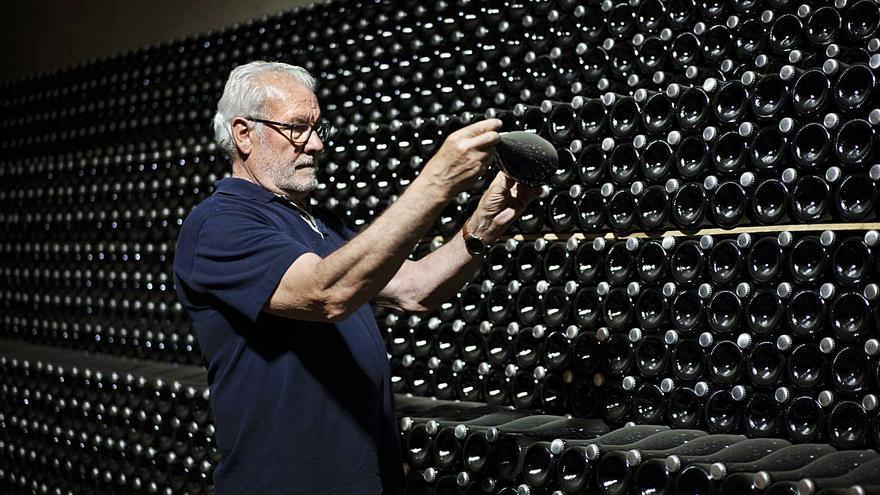 Guerra del cava: el Supremo impide que Cataluña limite la plantación de viñedos