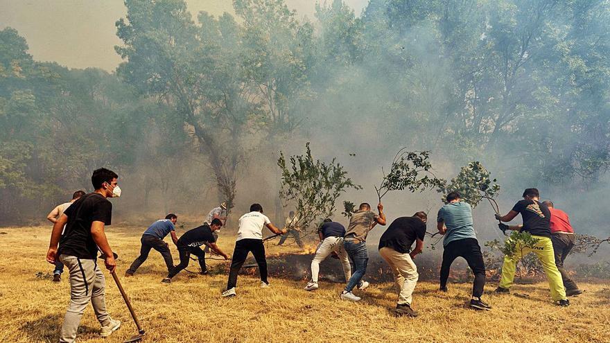 L'incendi d'Àvila ja ha destruït 12.000 hectàrees
