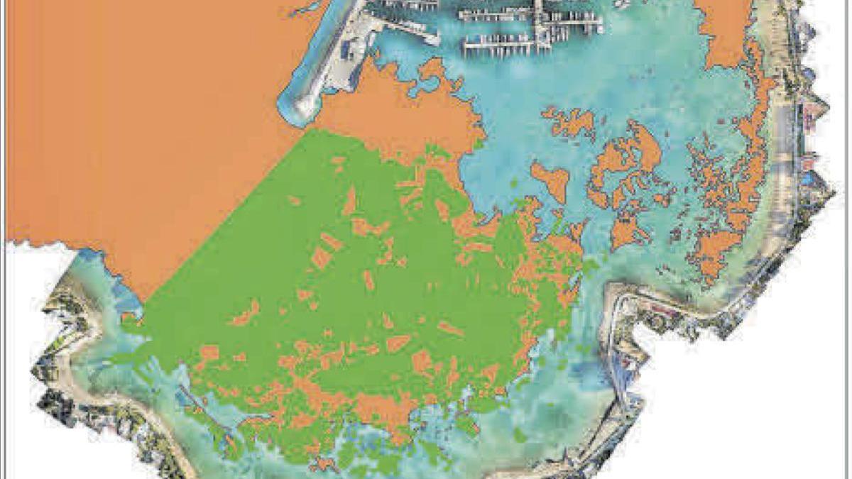 En verde, dentro de la bahía, la posidonia existente en la actualidad y, en naranja, en 2008