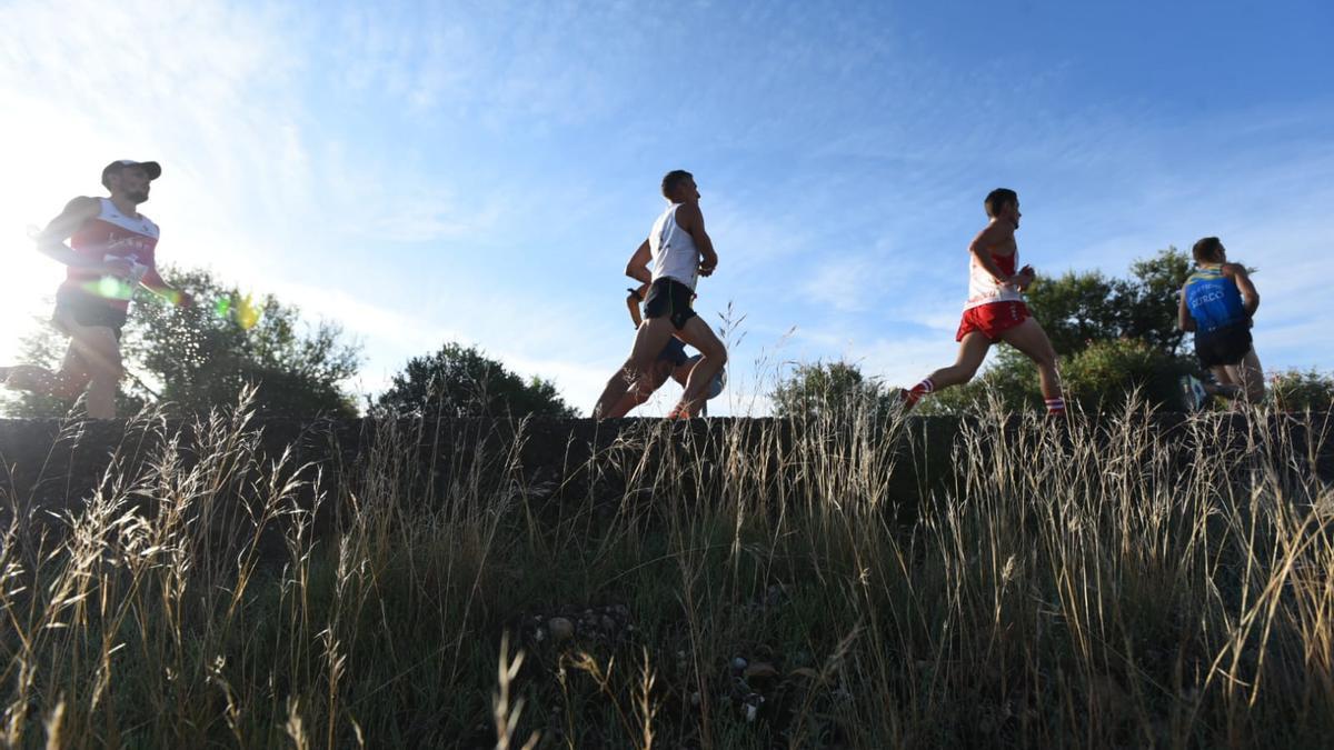 Las imágenes de la Media Maratón de Almodóvar