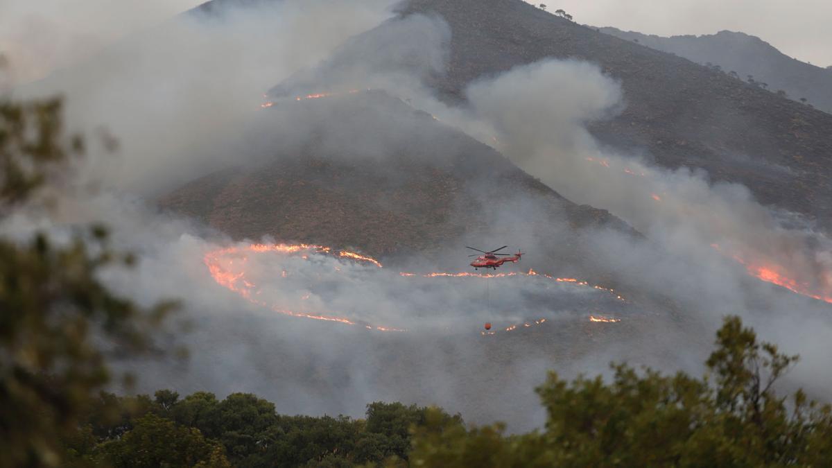 El incendio de Sierra Bermeja, que se declaraba hace casi una semana.