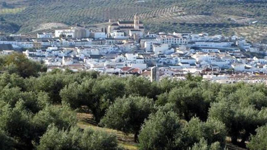 El aceite Cortijo de Suerte Alta de Baena se alza con el premio especial Alimentos de España