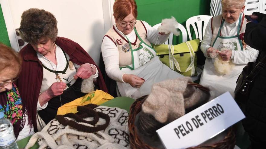 Calcetar con 'lana' de mi perro