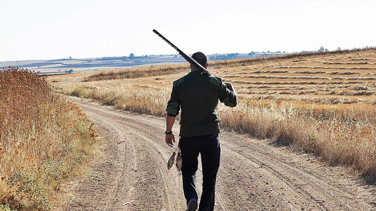 Un cazador camina por el campo tras haberse hecho con dos perdices. | Ical