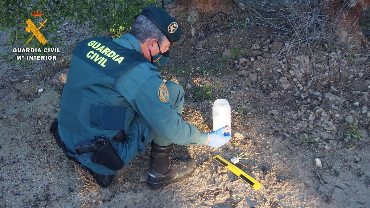 Un agente de la Guardia Civil investiga los cebos encontrados.