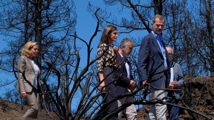 """El Rey queda """"impresionado"""" por el paisaje quemado por los incendios"""
