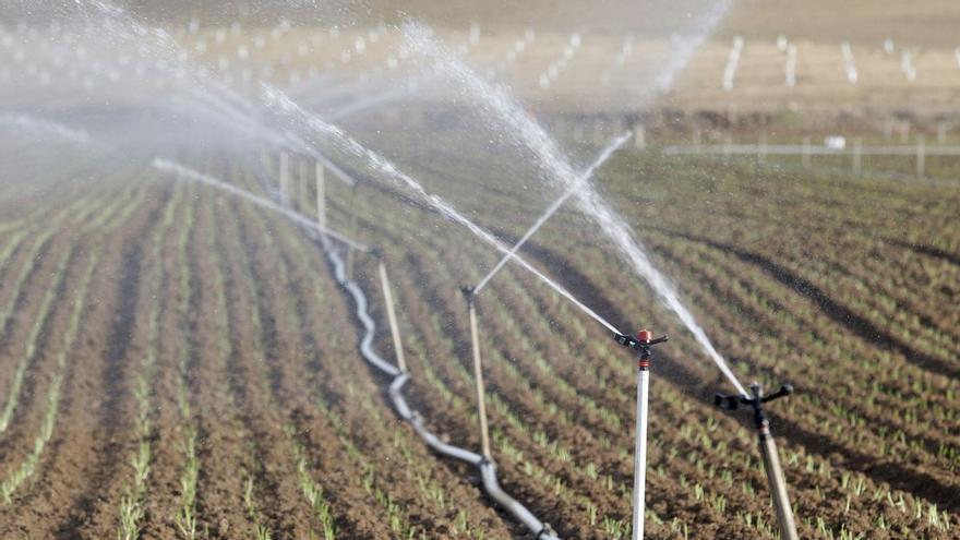 Los regantes aplauden el aumento de dotación de agua