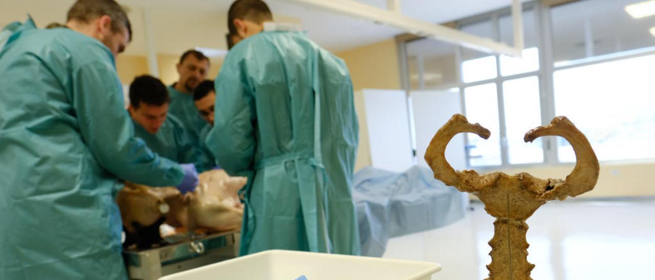 Medicina forma a boinas verdes para auxiliar a los heridos en sus misiones