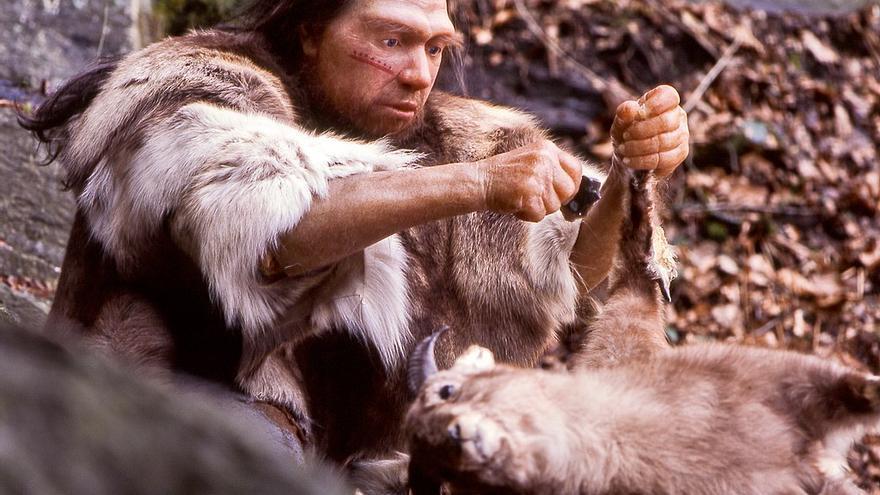 Los humanos fueron superdepredadores durante dos millones de años