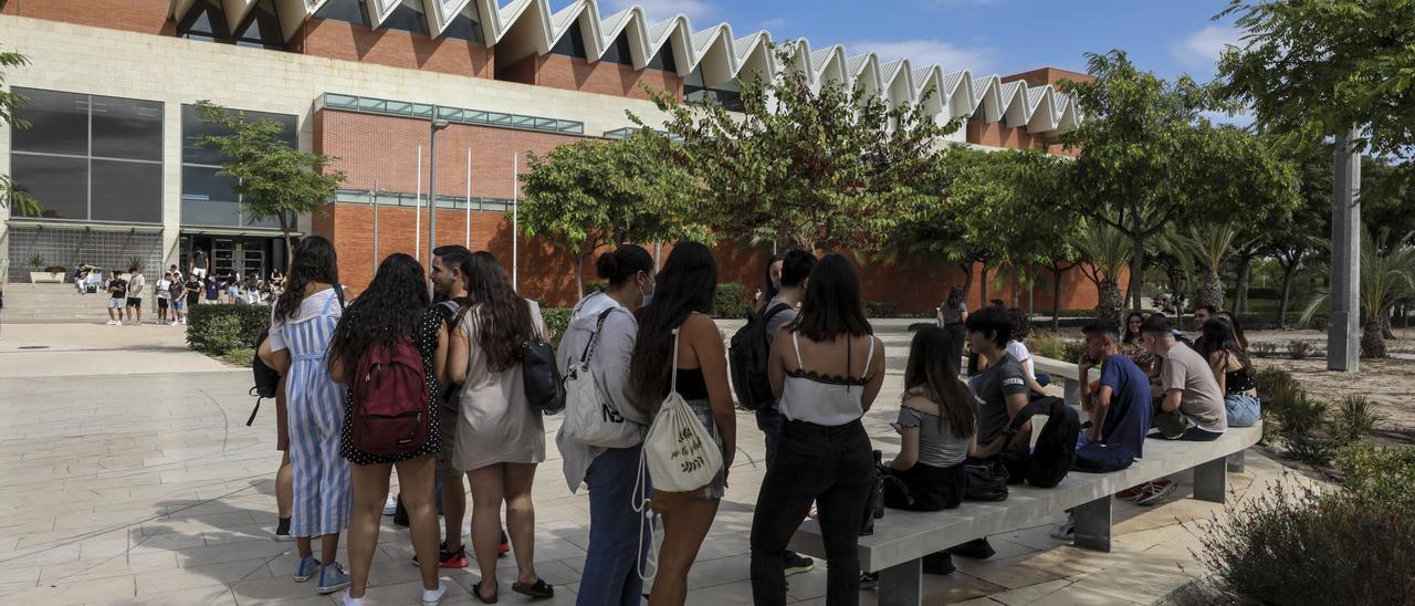 Estudiantes de la UMH de Elche.