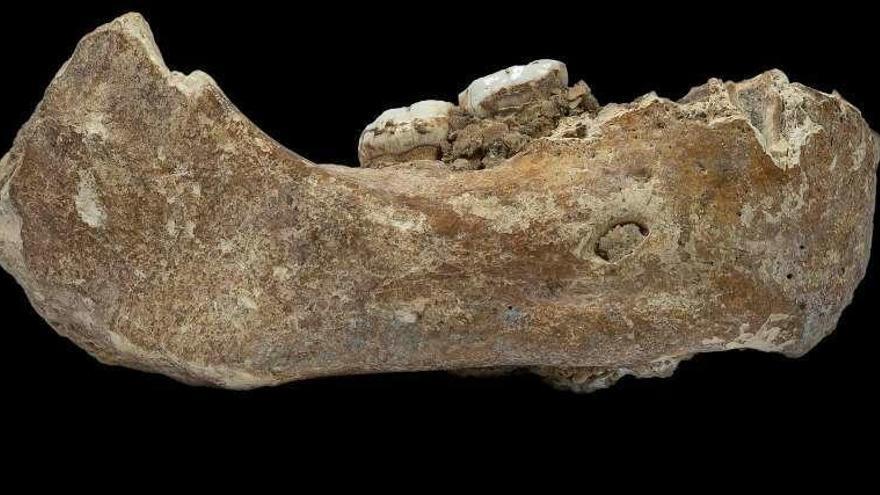 Una enigmática especie humana habitó el Tíbet hace 160.000 años