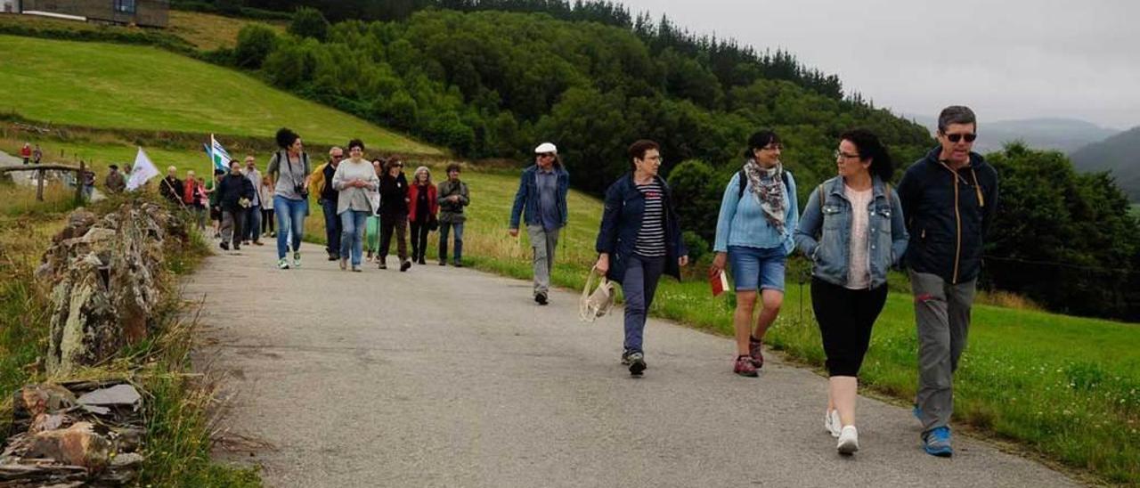 Asistentes a la visita al castro Chao Samartín del sábado.