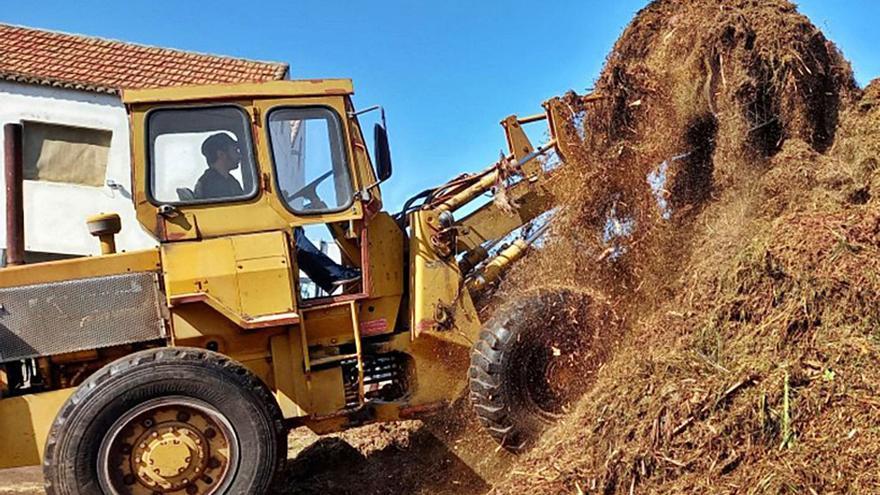 Ordenan paralizar en Los Llanos una planta de compost tras años de quejas