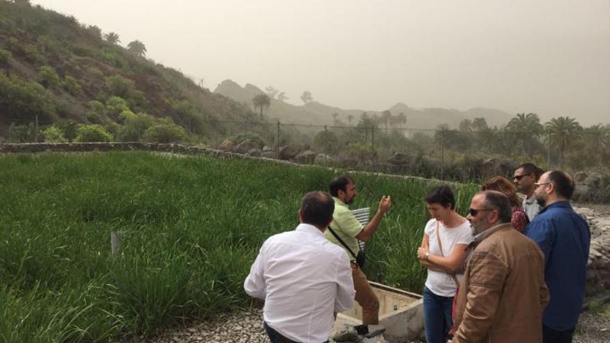 El Rosario denuncia el rechazo insular al humedal de Lomo Pelado