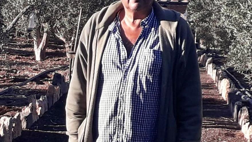 "José Santana Pérez: ""La falta de agua frena el desarrollo del cultivo del olivo"""