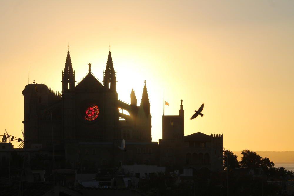 El calidoscopio de la Seu, un espectáculo lumínico que coincide con el solsticio de invierno