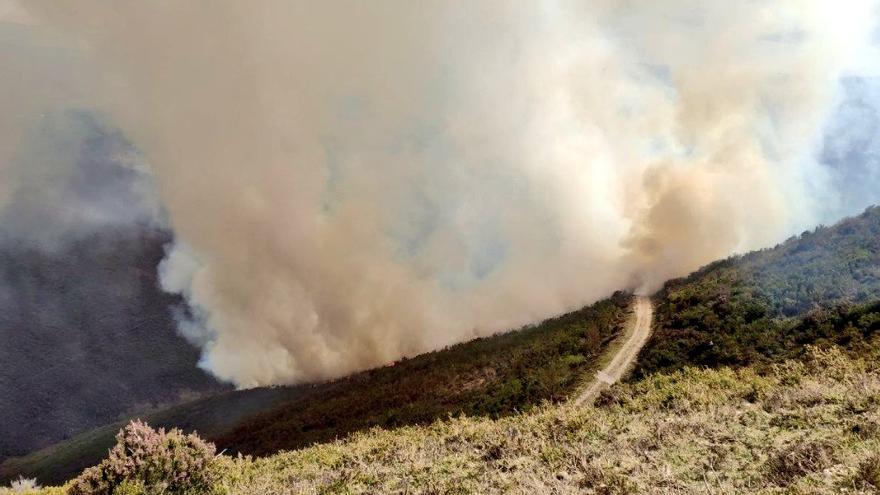 Un incendio en Iboyo (Allande) obliga a movilizar a los Bomberos del SEPA y la brigada de Tineo