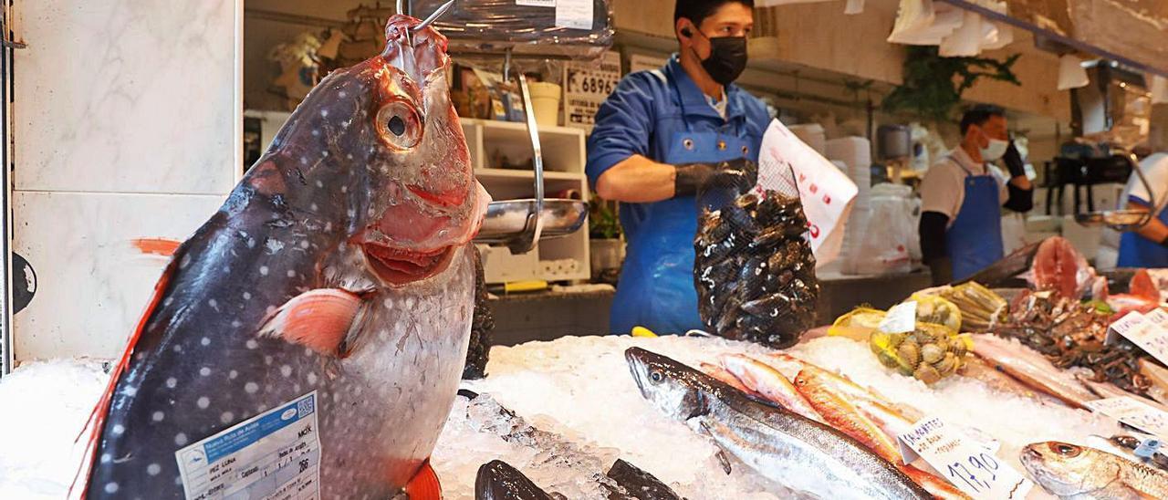 El pez luna real expuesto en la pescadería Casapesca de Avilés ayer. | Mara Villamuza