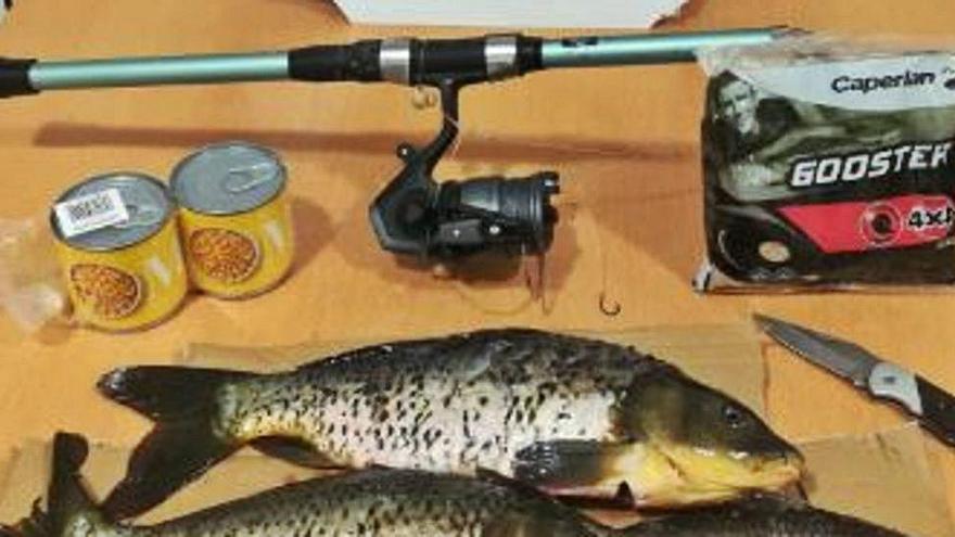 Denunciat per pescar furtivament al parc dels Estanys a Platja d'Aro