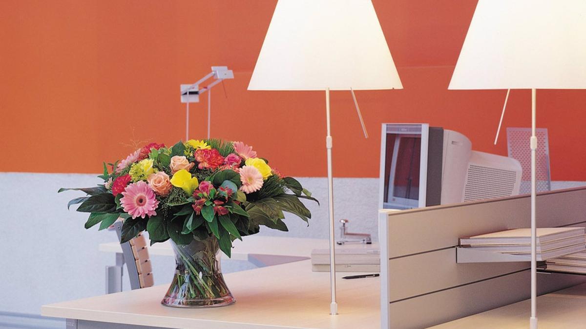 Flores y plantas ayudan a aliviar el estrés y ansiedad.