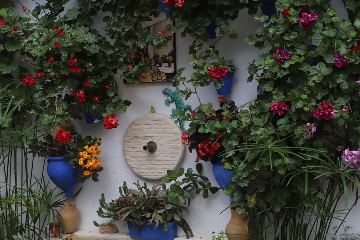 Los patios de Córdoba, San Lorenzo
