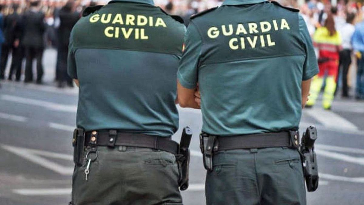 Las actuaciones las han llevado a cabo agentes de la Guardia Civil en Tenerife desde el pasado 13 de noviembre. | | E.D.
