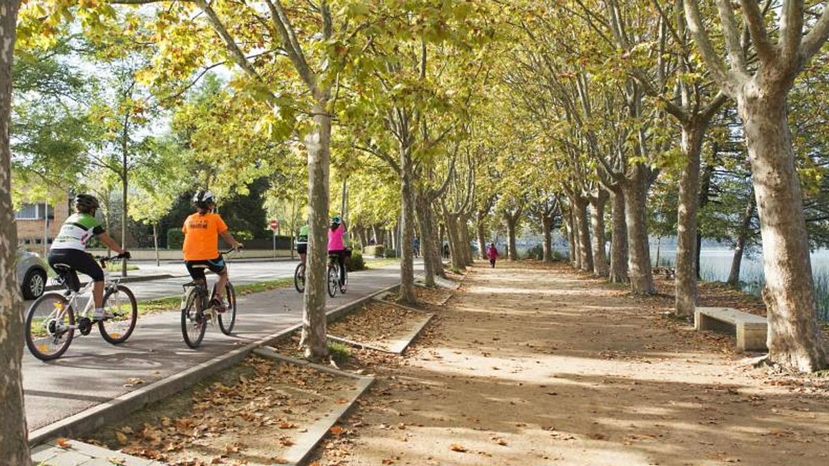 La ruta que es pot fer en bicicleta dona la volta a tot l'Estany reseguint en la seva major part el carril bici i es pot completar en una hora. | PERE DURAN/NORD MEDIA