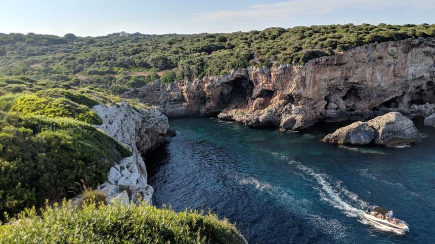 El Mediterráneo se 'tropicaliza': ya tiene 1.000 especies invasoras
