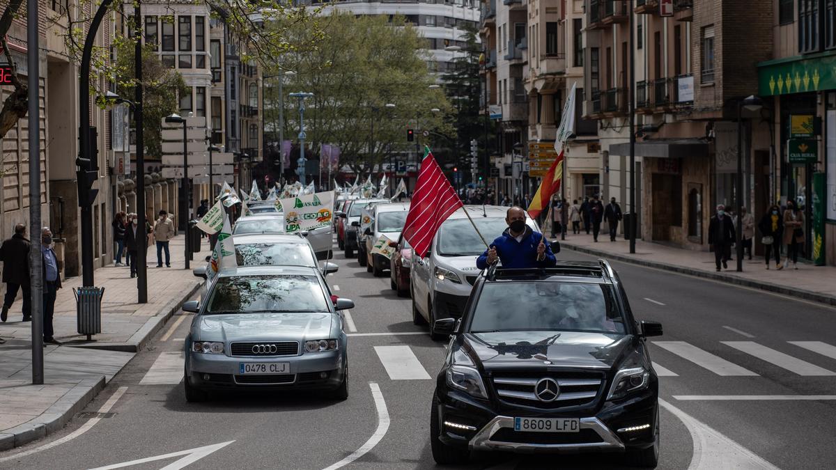 """Manifestación contra el """"blindaje"""" del lobo en Zamora"""