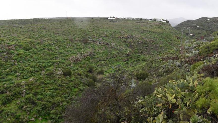 Las lluvias de 'Filomena' compensan un diciembre seco en las Islas