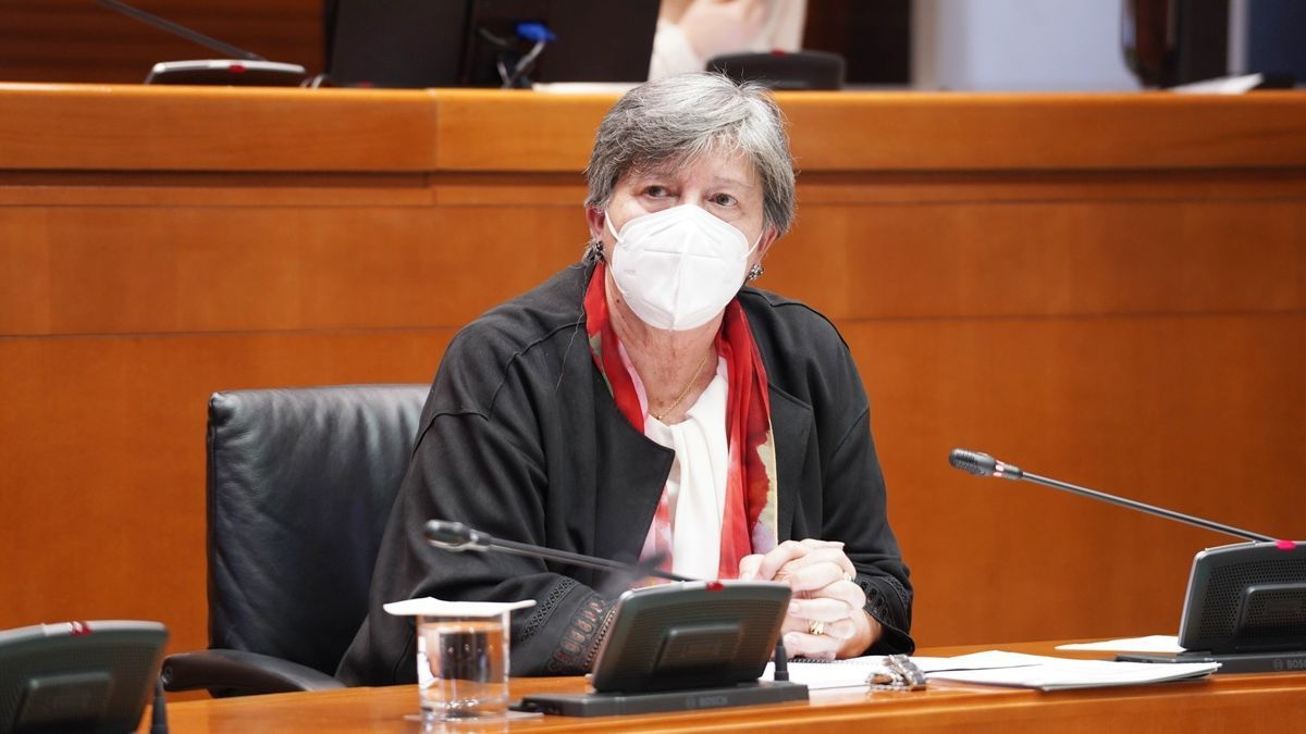 La directora de la Fundación ARAID, María Teresa Gálvez.