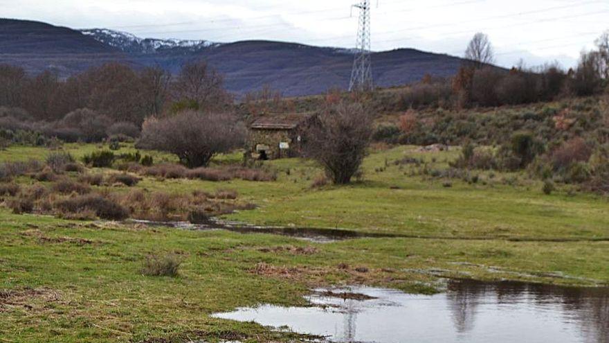 La oficina comarcal de la Junta, colapsada por alegaciones del parque solar de Cobreros