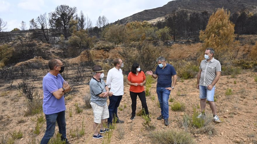 El PSPV pide que la zona afectada por el incendio de Azuébar sea declarada como 'catastrófica'