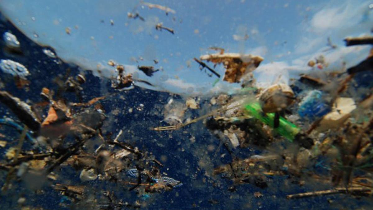 Residuos plásticos en el océano.