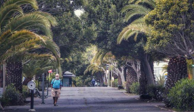 Paseo por Santa Cruz de Tenerife