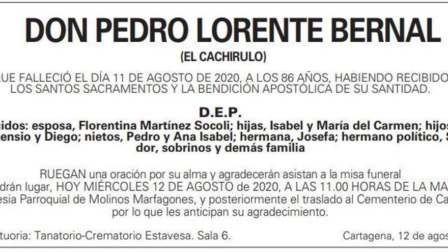 D. Pedro Lorente Bernal