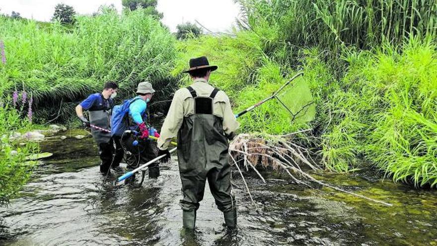 Un estudio apunta a la presencia de mercurio en el pantano de Beniarrés