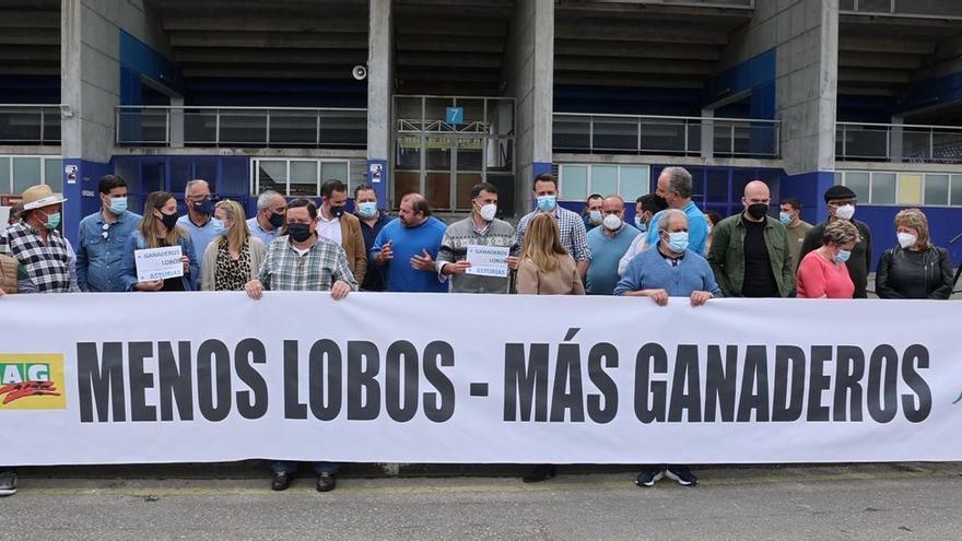 Seis ganaderos, detenidos en Castropol y Vegadeo por fraude en las ayudas del lobo
