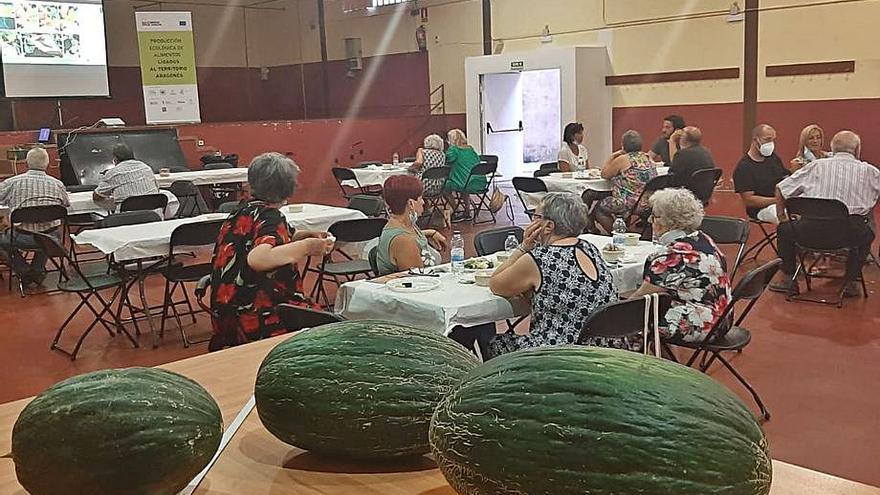 Catas y muestra del melón de Torres de Berrellén