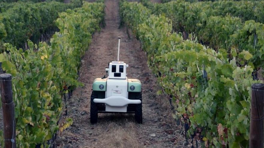 Así funciona el robot inventado en Valencia para cuidar los viñedos