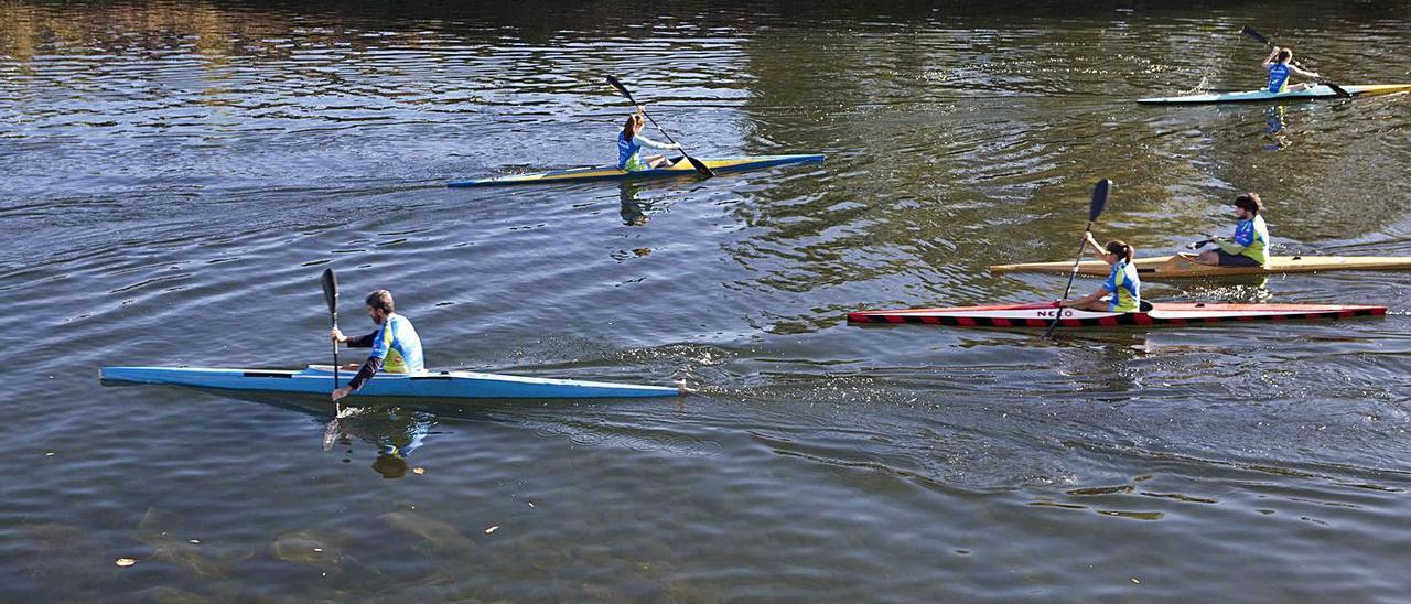 Palistas entrenando en el río Nalón a la altura de Lada en una imagen de archivo.   Fernando Rodríguez