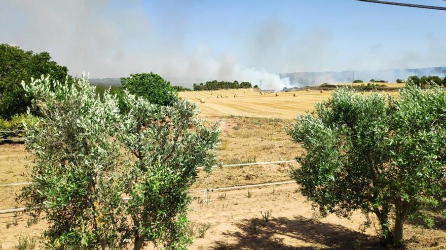 Una dotació dels Bombers s'ha quedat aquest matí a Rajadell per controlar la zona on ahir van cremar 15 hectàrees