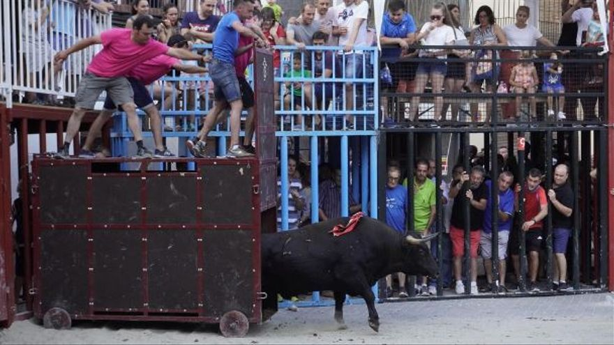 Vilafamés anuncia cuatro toros para las fiestas de agosto
