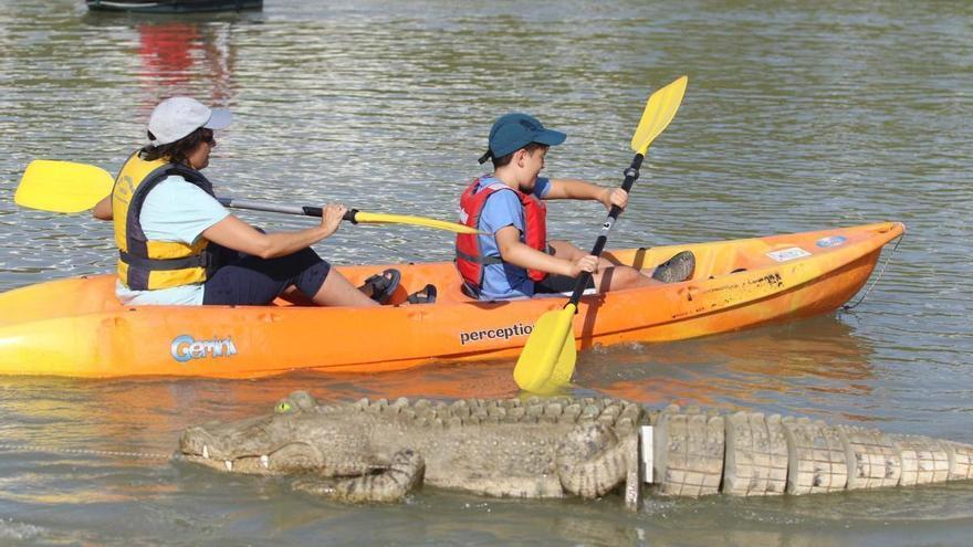 ¿Quieres conocer el patrimonio natural de Córdoba? Paseos en kayak, yincanas, senderismo y mucho más
