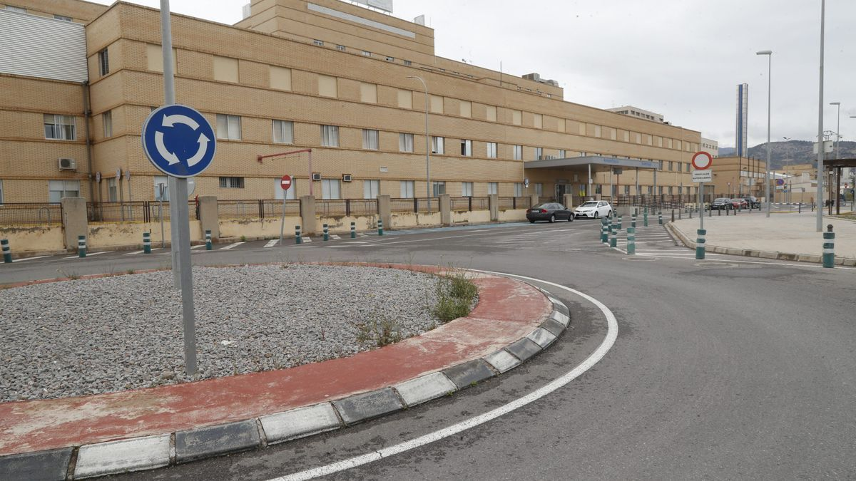 Herido un niño de 14 años tras morderle un perro en Castelló