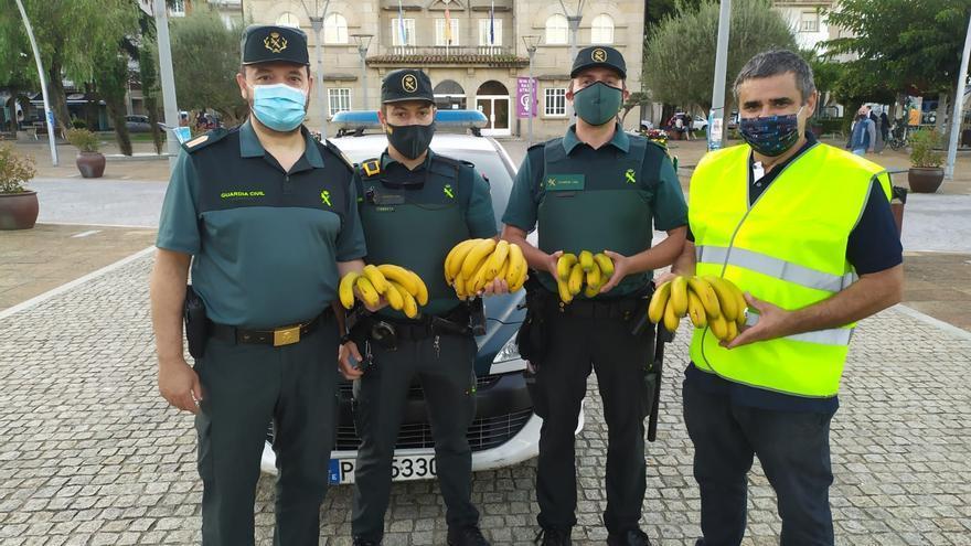 Mil plátanos de solidaridad en O Grove