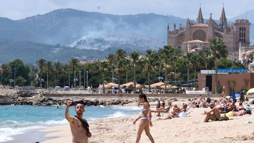 Waldbrand kommt Villensiedlung Son Vida in Palma de Mallorca bedrohlich nah