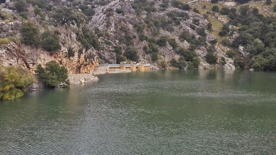 Emaya adquirirá este mes agua desalada para garantizar el suministro a Palma