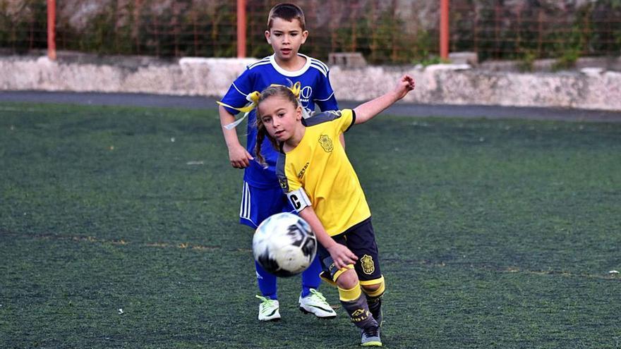 El IMD licita la organización de las ligas de fútbol 8 y baloncesto
